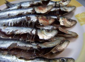 Expat family health adhd risk linked to mercury exposure for Which fish has the most mercury